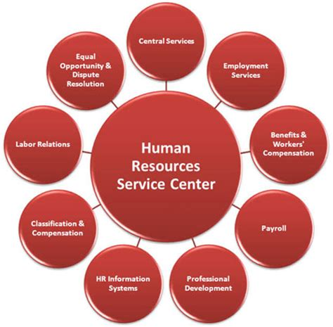 48 Best Of Health and Human Services Resume Examples